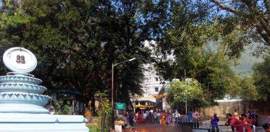 Tirupati Darshan By Walk