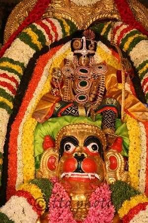 goddess Padmavati Devi on hanumad vahanam