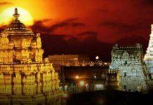 tirupati darshan time today