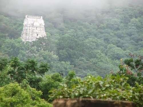 Venkatadri hills