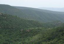 neeladri hills
